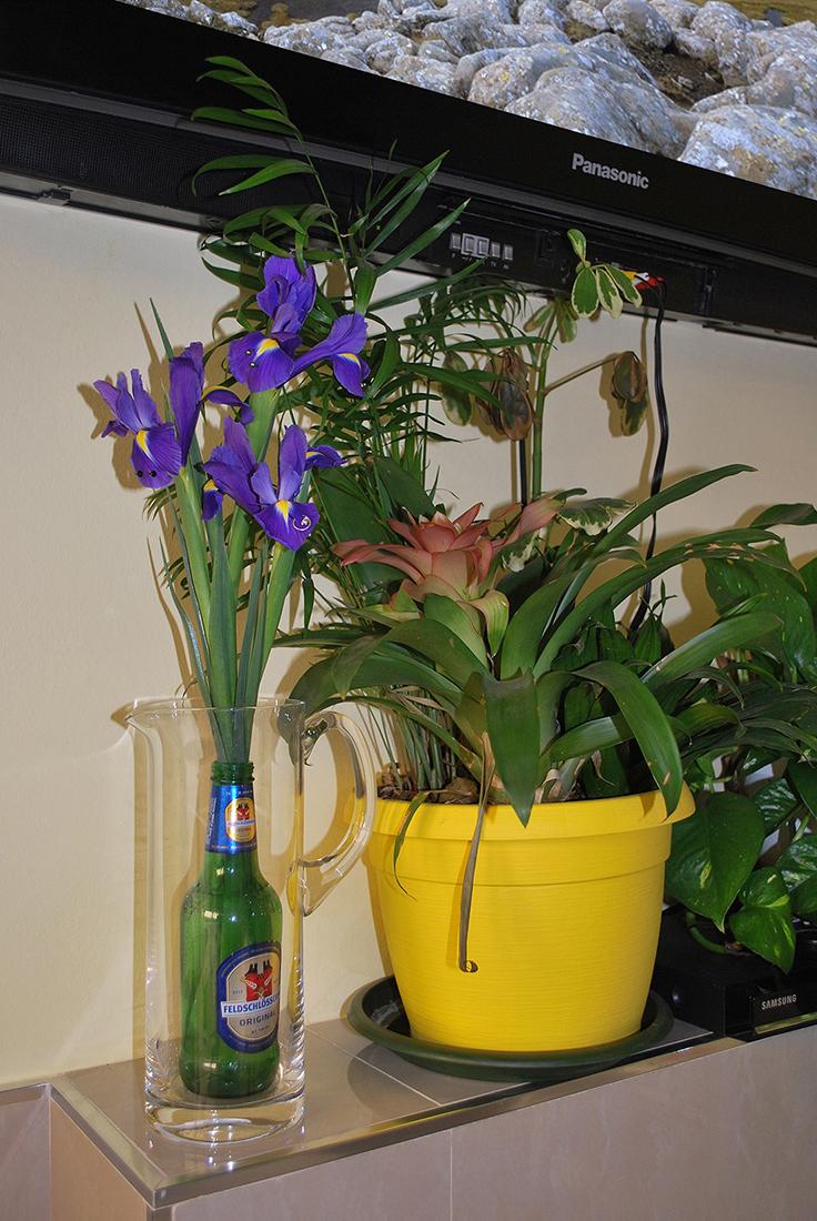 """ADAM CRUCES """"Vase with Pierced Irises"""", 2016 - Glass vase, beer bottle, piercing earrings, flowers"""